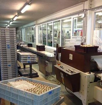 veiligheidsfolie voedselindustrie